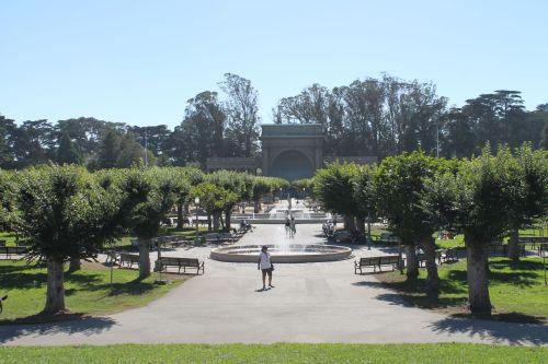 GG_Park_Trees
